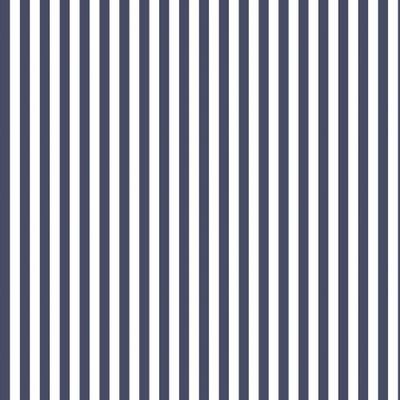 Medium Stripe - Navy
