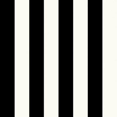 Large Stripe - Pearl / Black