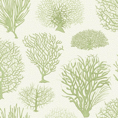 Seafern - Pale Green