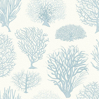 Seafern - Blue