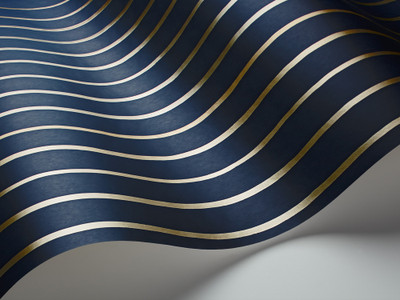COLLEGE STRIPE - NAVY / GOLD