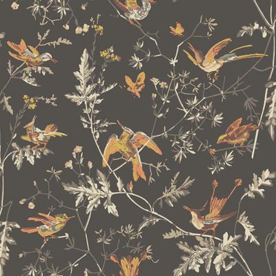 Hummingbirds - Charcoal