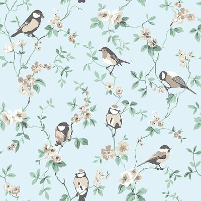 FALSTERBO BIRDS - BLUE