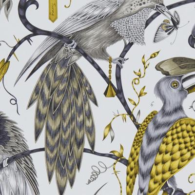 Audubon - Gold