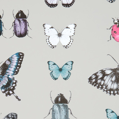 Papilio - Teal/gilver