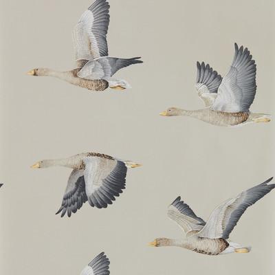 Elysian Geese - Gilver