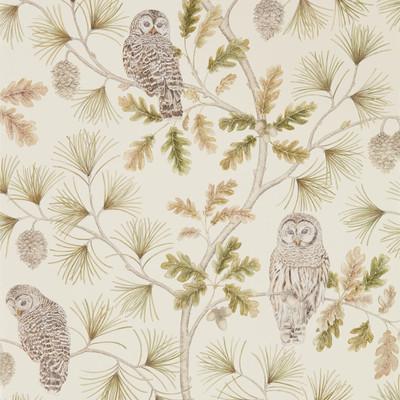 Owlswick - Briarwood