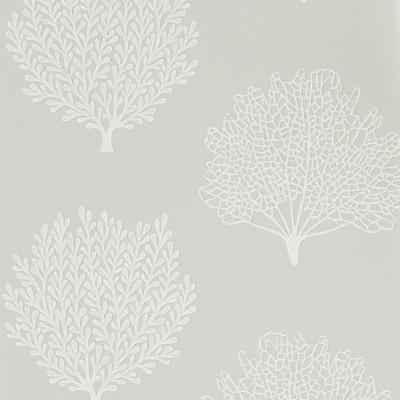 Coraline - Gull
