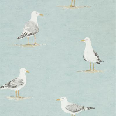Shore Birds - Sky