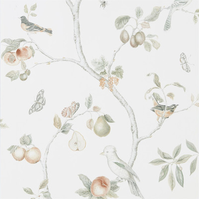 Fruit Aviary - Ivory/mineral