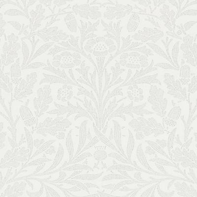 Pure Acorn - Chalk/silver