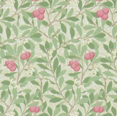 Arbutus - Olive/pink