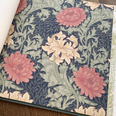 Chrysanthemum - Indigo