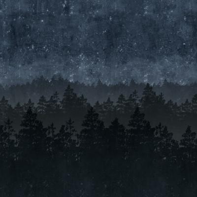 Mural - Nordic Night (3.6m X 2.6m)
