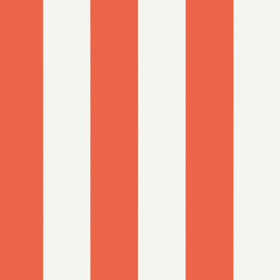 Summer Stripe - Coral