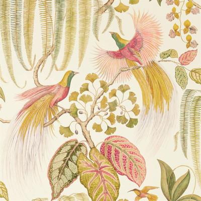 Bird Of Paradise - Olive / Rose