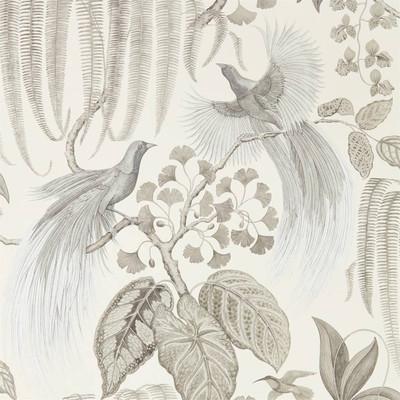 Bird Of Paradise - Linen