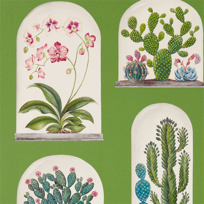 Terrariums - Botanical Green