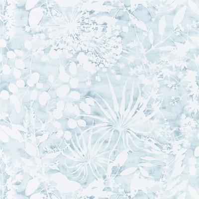 Coralline - Ocean Blue