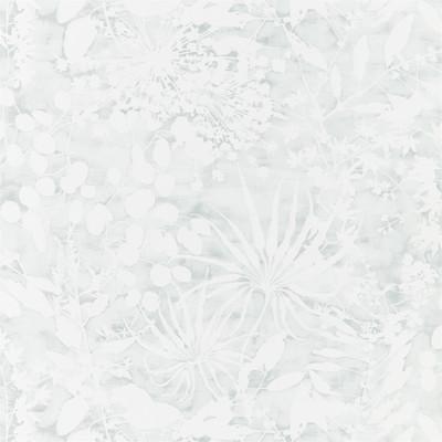 Coralline - Mineral
