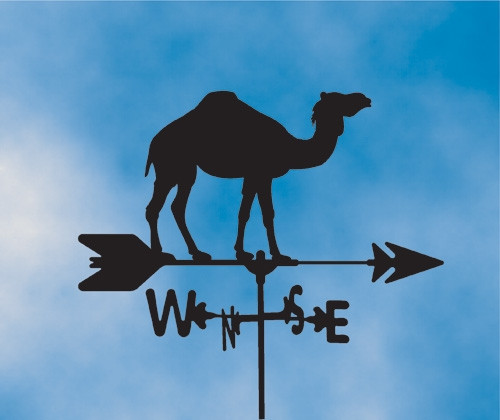 Camel Weathervane