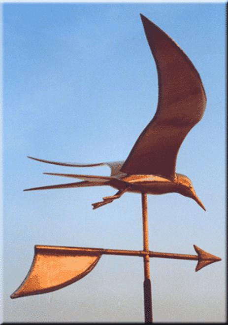 Tern Weathervane