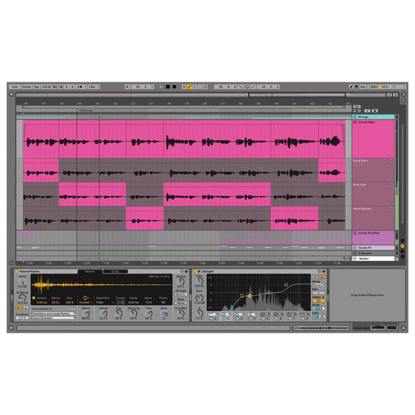 Ableton Live 11 Standard, Upgrade from Live Lite (Download)