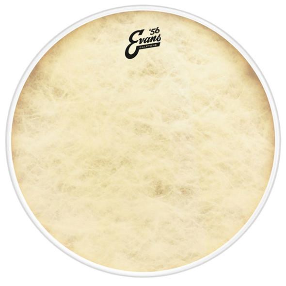 Evans EQ4 Calftone 18 Inch Bass Drum Head