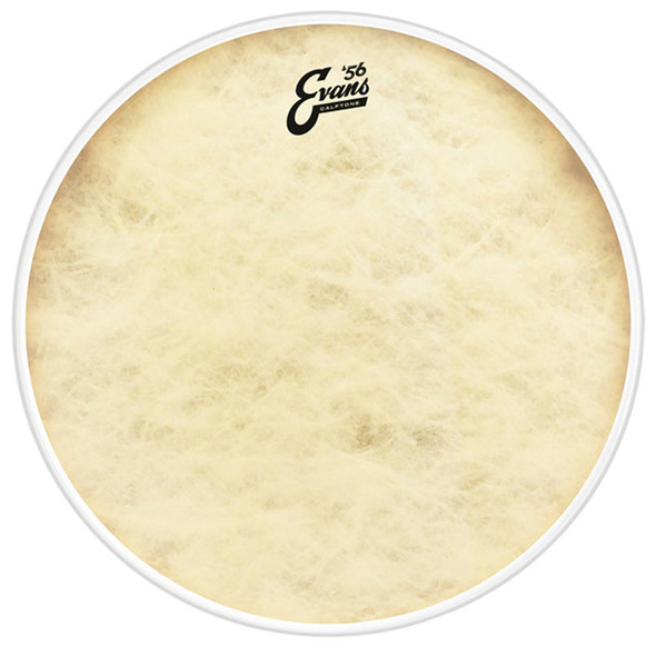 Evans BD20GB4CT EQ4 20 Inch Calftone Bass Drum Head