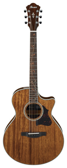 Ibanez AE245 Electro-Acoustic Guitar, Natural