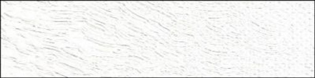 Old Holland Cremnitz White Lead White 40ml