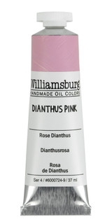Williamsburg Dianthus Pink Oil Colour