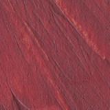 Sanguine Earth Dp Pigment Stick 38ml