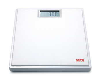 Digital Personal Flat Scale