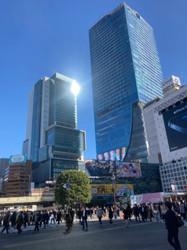 Shibuya 2020