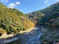 Arashiyama 2020