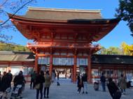 Shimogamo Shrine 2020