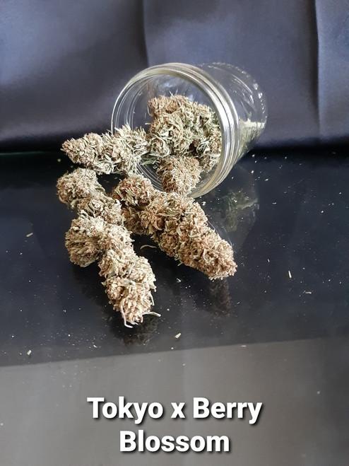 Tokyo x Berry Blossom 3.5 Gram