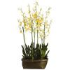 "Oncidium Orchid in Basket 60"""