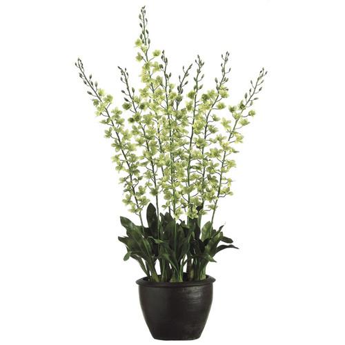 "Grammatophyllum Orchid in Terra Cotta 70"""