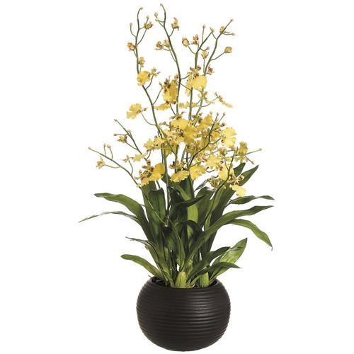 """Oncidium Orchid in Sphere Vase 38"""""""