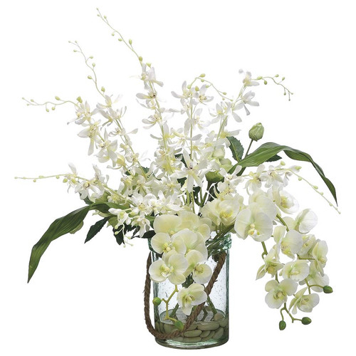 Phalaenopsis Dendrobium Orchid in Glass Vase 24""