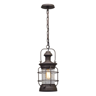 Atkins,Troy Lighting,Atkins 1lt Hanger Lantern Medium
