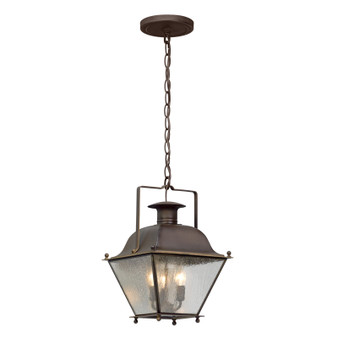 Wellesley,Troy Lighting,Wellesley 3lt Hanger Lantern Small