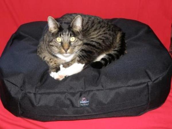 Pet Care Fatz Sacs