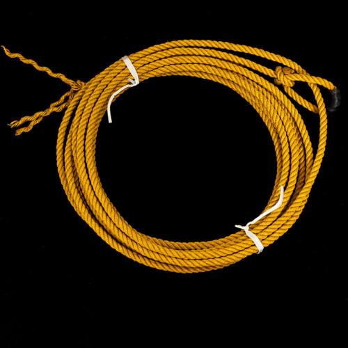 Gold Lariat
