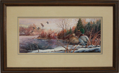 """Morning Mallards"" acrylic by D. Maloney"