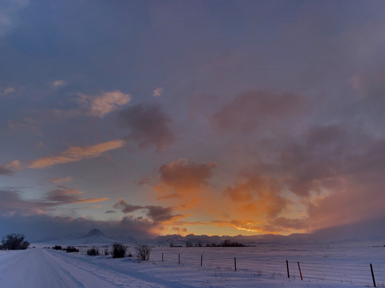 A Love Letter to Montana