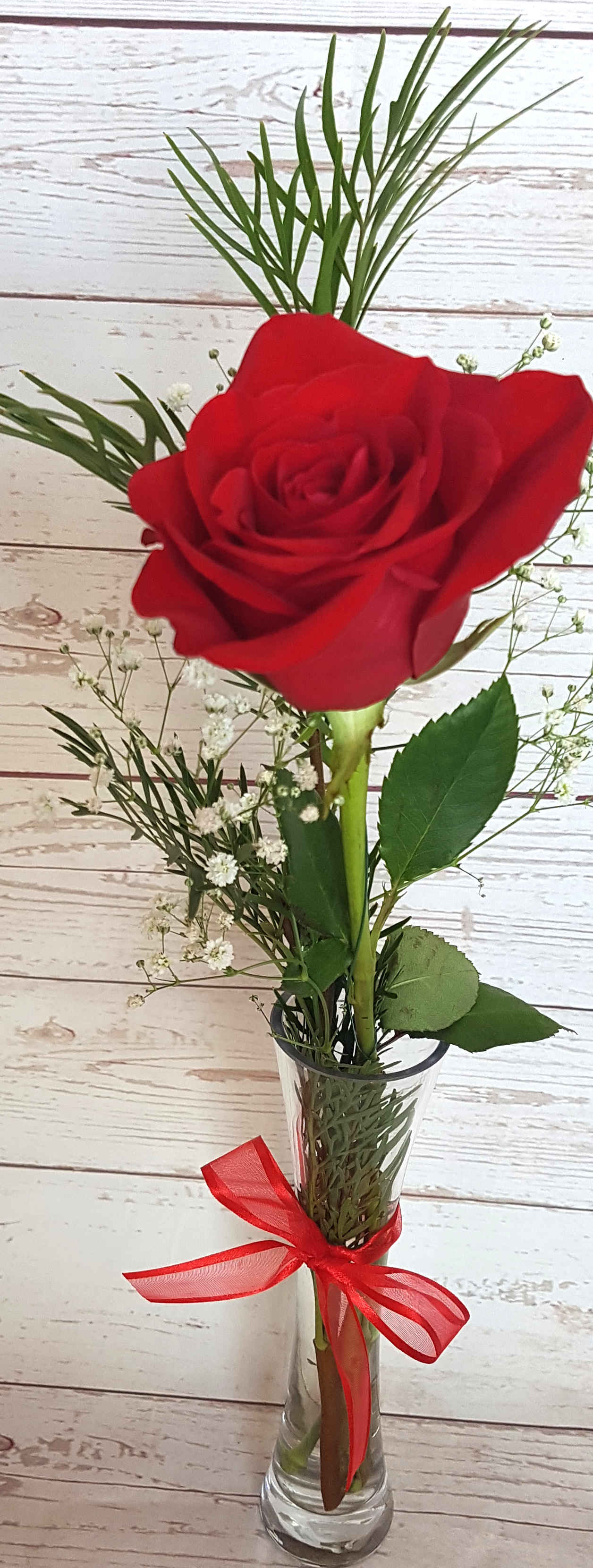 A single red rose, presented in vase with babies breath and greenery.