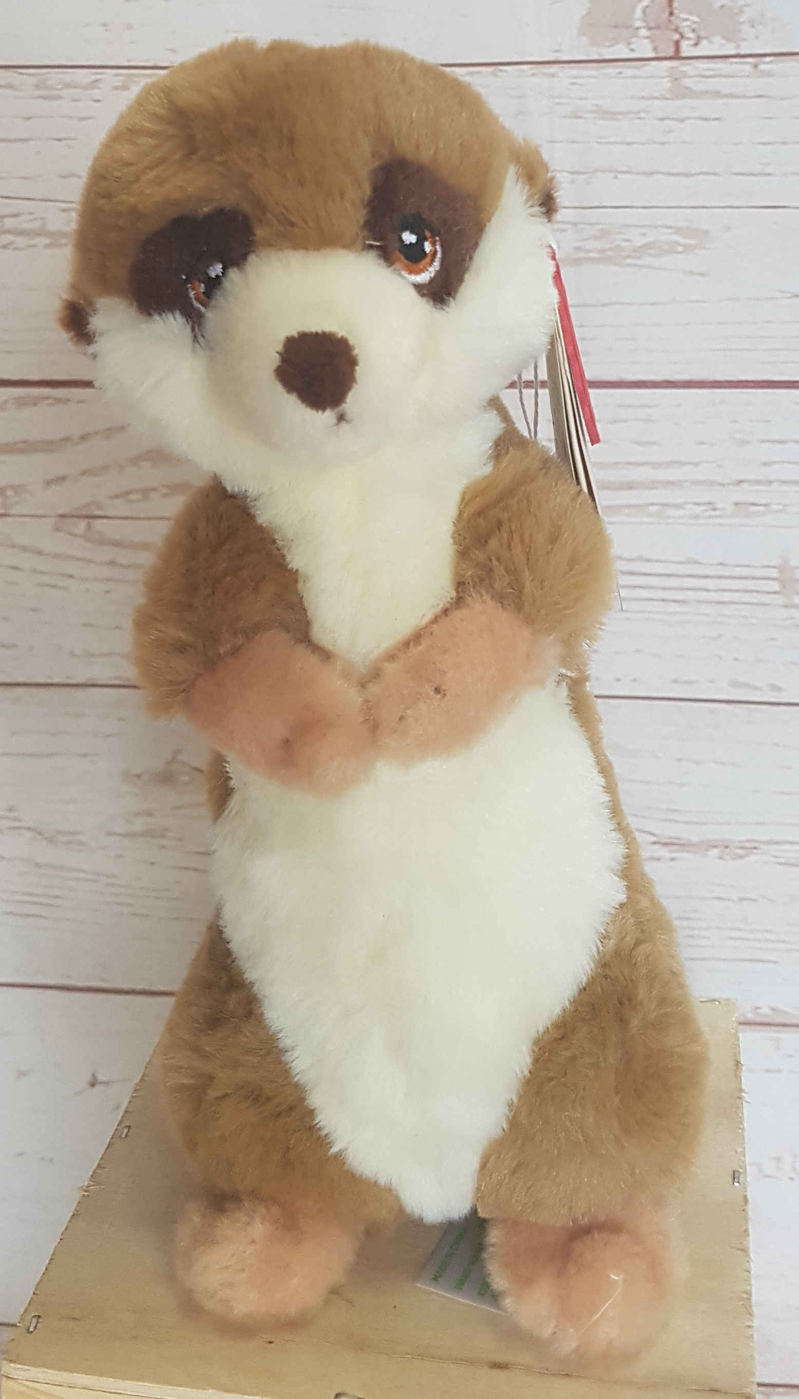 THIS CUTE LITTLE MEERKAT IS SURE TO DELIGHT, ONE HUNDRED PERCENT HUGGABLE.